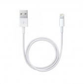 Cablu de date Apple ME291ZM/A 0.5m