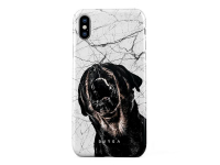 Husa Plastic Burga Dangerous Behavior Apple iPhone XS, Blister iPX_SP_SV_23